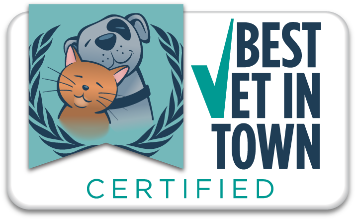 WIndmill Selected Best Vet In Abilene
